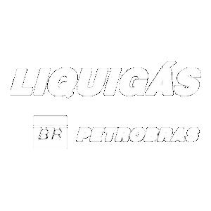 LIQUIGAS DISTRIBUIDORA S/A